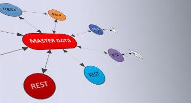 plm web services