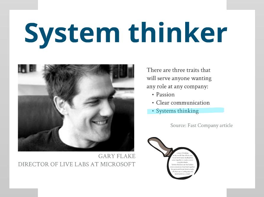 system thinker